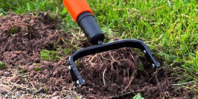 Чем убрать сорняки на участке? инструменты (извлекатели) для уборки сорняков