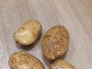 Описание сорта картофеля «таисия»: характеристика,  урожайность, отзывы и фото