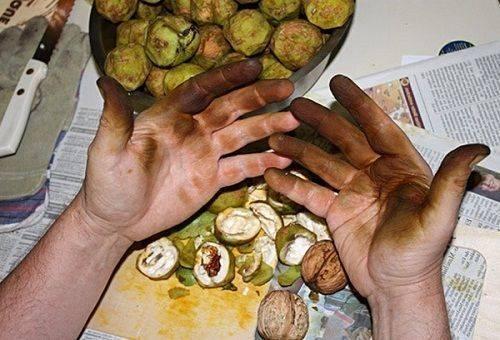 Чем отмыть руки после зелёных грецких орехов в домашних условиях: 6 способов - onwomen.ru