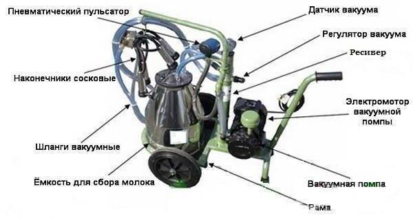 Доильный аппарат Буренка: отзывы и инструкция
