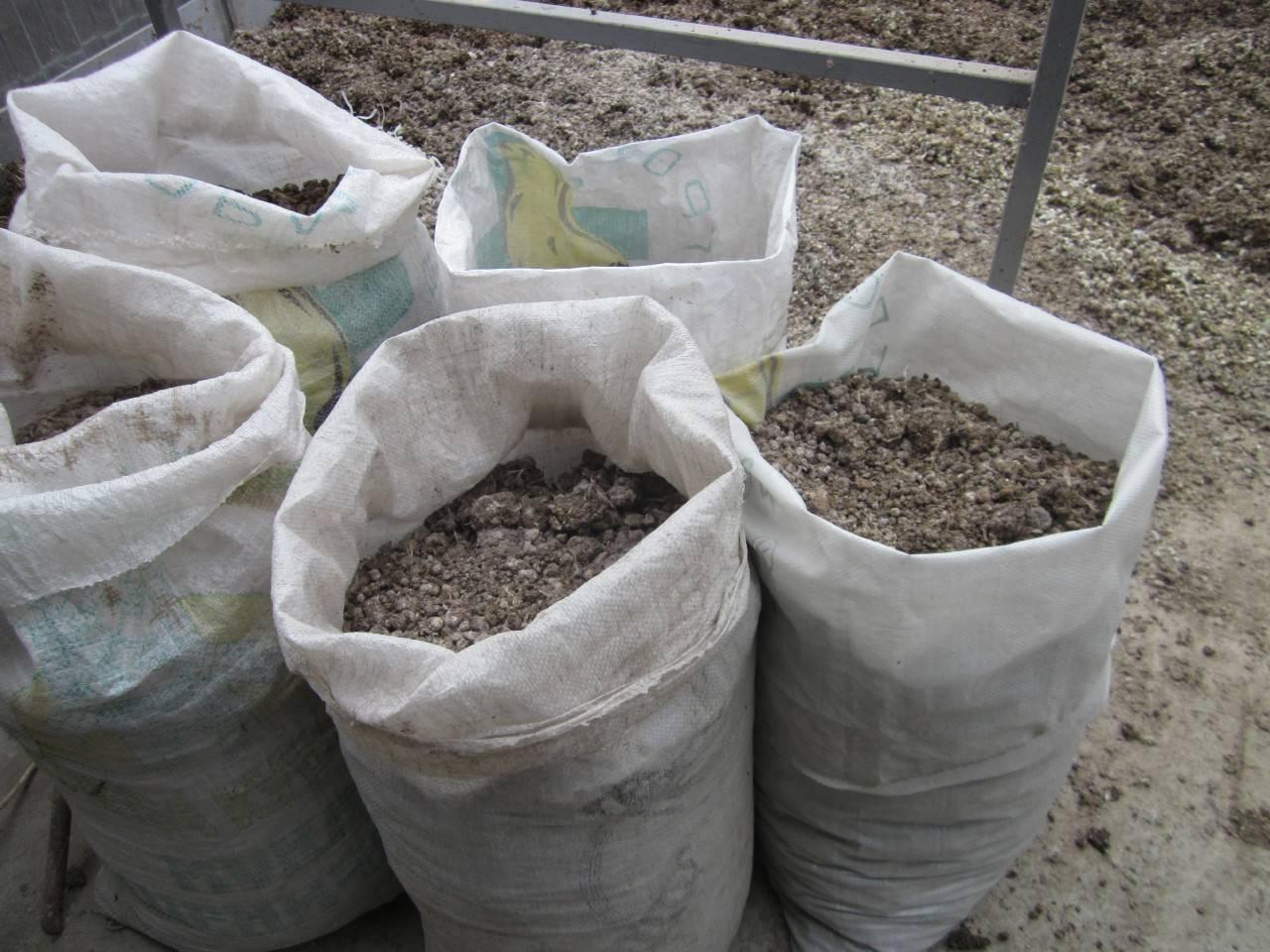 Куриный помет как удобрение как применять. 9 вариантов, как разводить куриный помет для растений.   красивый дом и сад