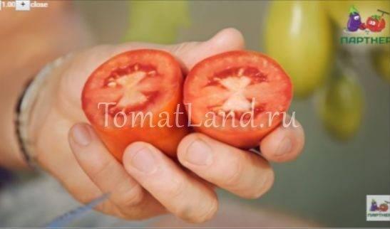 Гибрид с необыкновенным видом — томат царское искушение f1: описание помидоров и характеристики