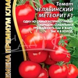 О томате челябинский метеорит: правила посадки, выращивания, размножения