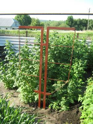Шпалера для помидоров своими руками - 105 фото, видео, инструкций как быстро и правильно изготовить шпалеры для томатов