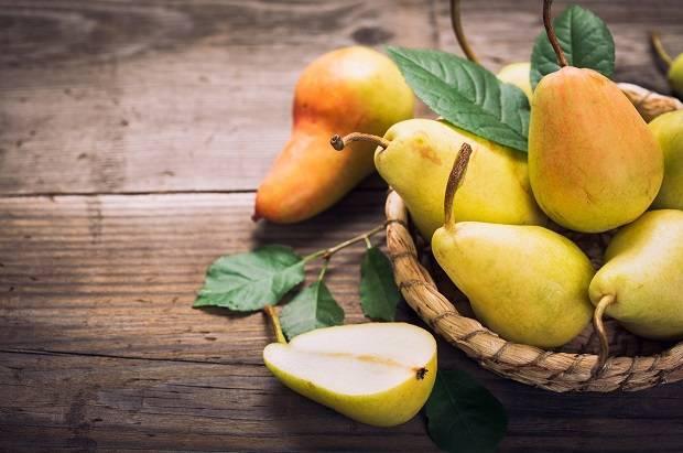 Китайская груша польза и вред. китайская груша – полезные свойства и разновидности сортов
