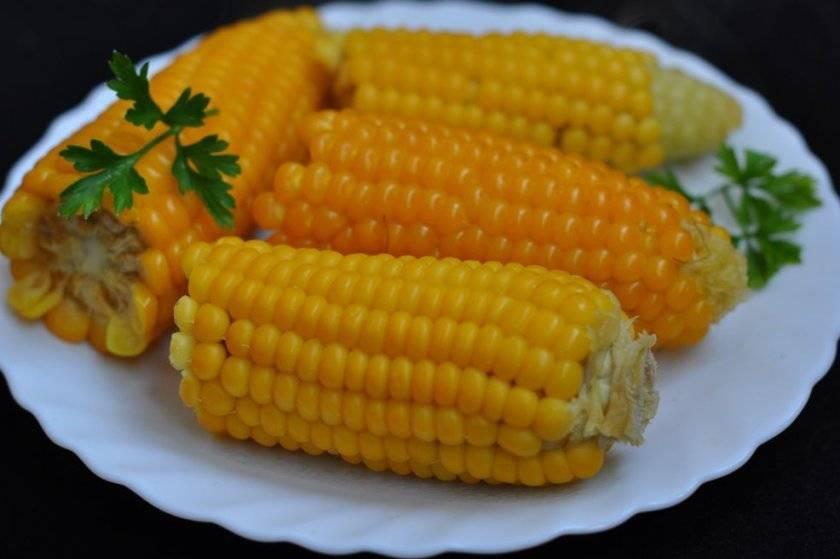 Польза и вред кукурузы для здоровья человека