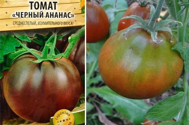 Описание сорта томата ананас, особенности выращивания и ухода