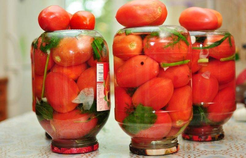 Томат Каспар: отзывы, фото, урожайность