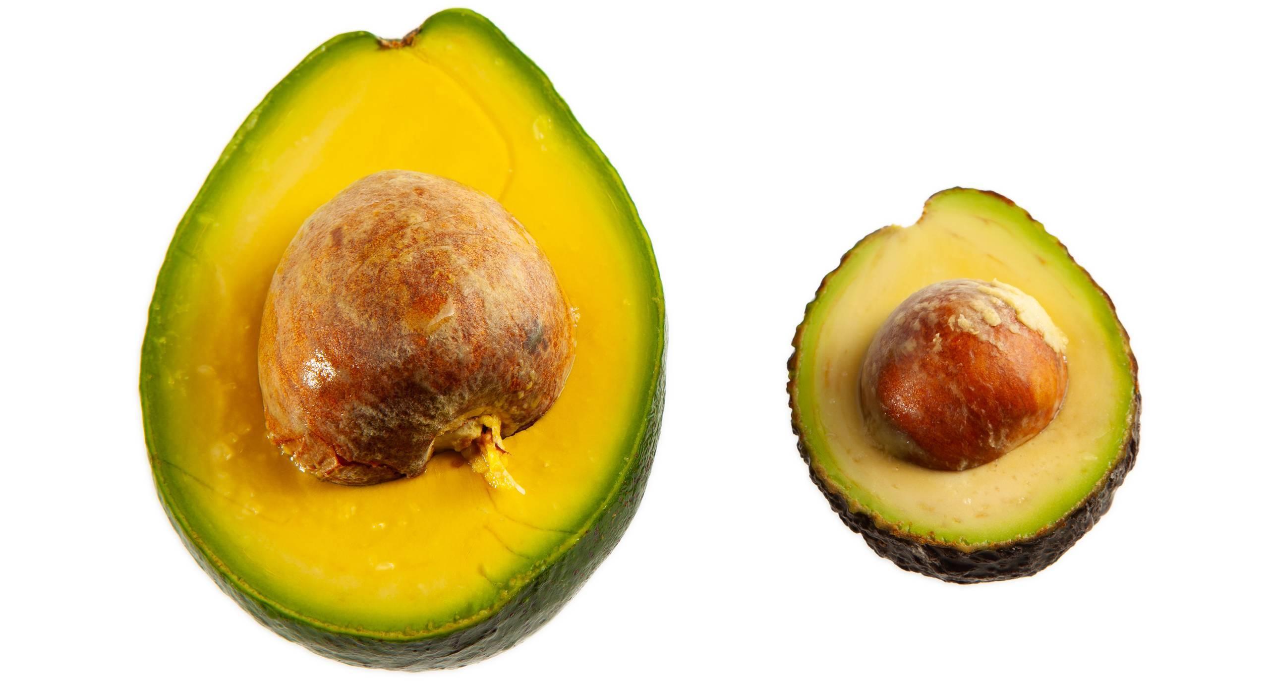 Можно ли жарить авокадо — ягоды грибы
