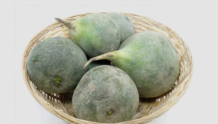 «покаянный овощ»: вред, польза ицелебные свойства редьки
