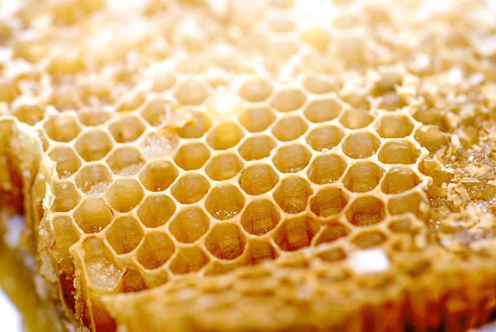 Широкое применение воска пчел – от косметологии до авиационной промышленности!