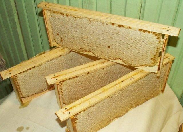 Снабжение пчел на зиму кормом количество и качество зимних кормов