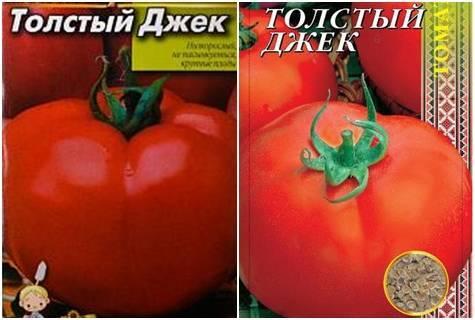 Помидоры толстый джек: детальное описание, способ выращивания и отзывы о томате