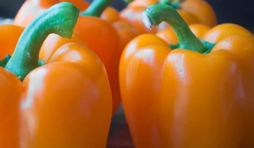 Перец оранжевое чудо - общая информация - 2020