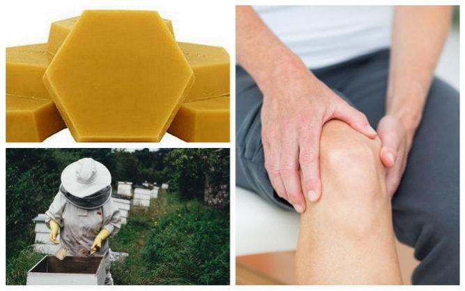 Пихтовое масло для лечения суставов — полезные свойства и как применять | все о суставах и связках