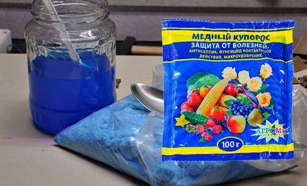Фунгицид медный купорос: инструкция по применению препарата, обработка и опрыскивание