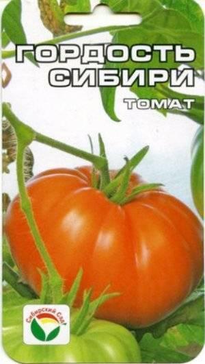 Томат «гордость сибири»: описание и характеристика сорта, особенности ухода и выращивания