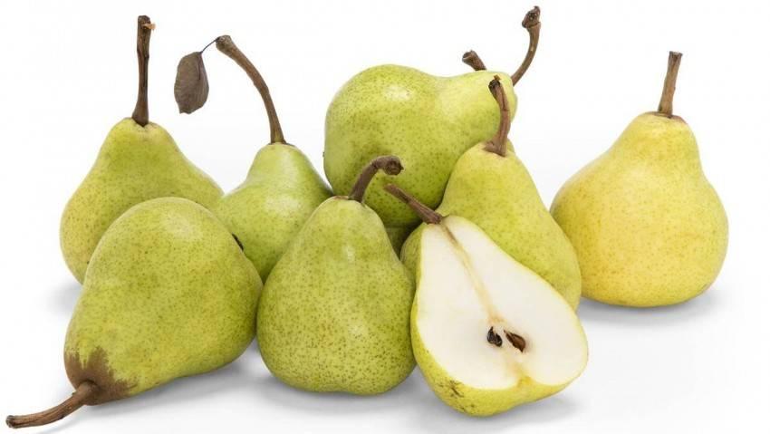 Груша: польза и вред. витамины в груше