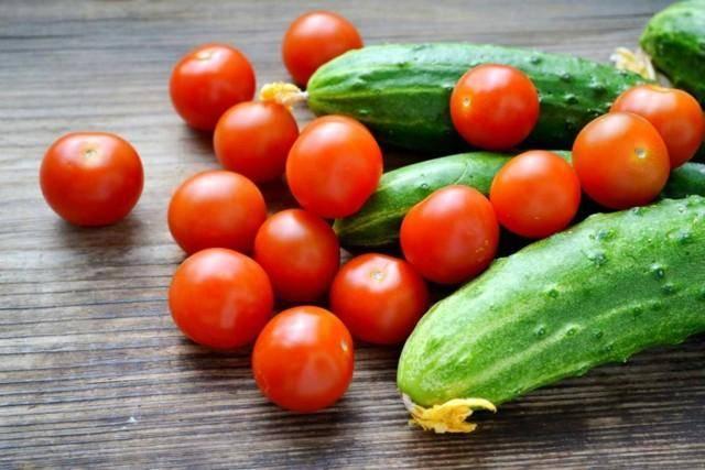 Подкормка дрожжами помидоров и огурцов: дешево и результативно