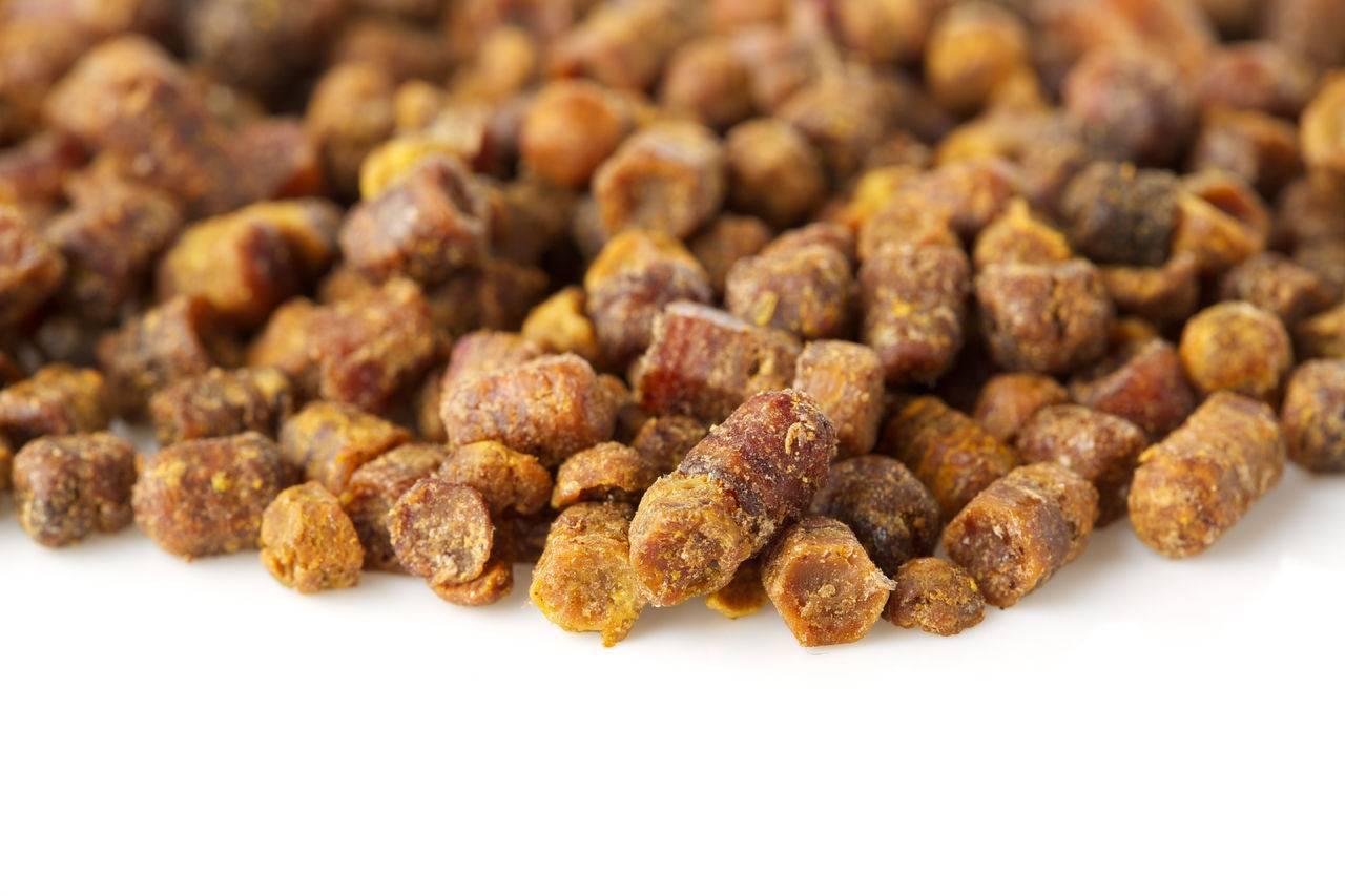 Мед с пергой: полезные свойства и противопоказания
