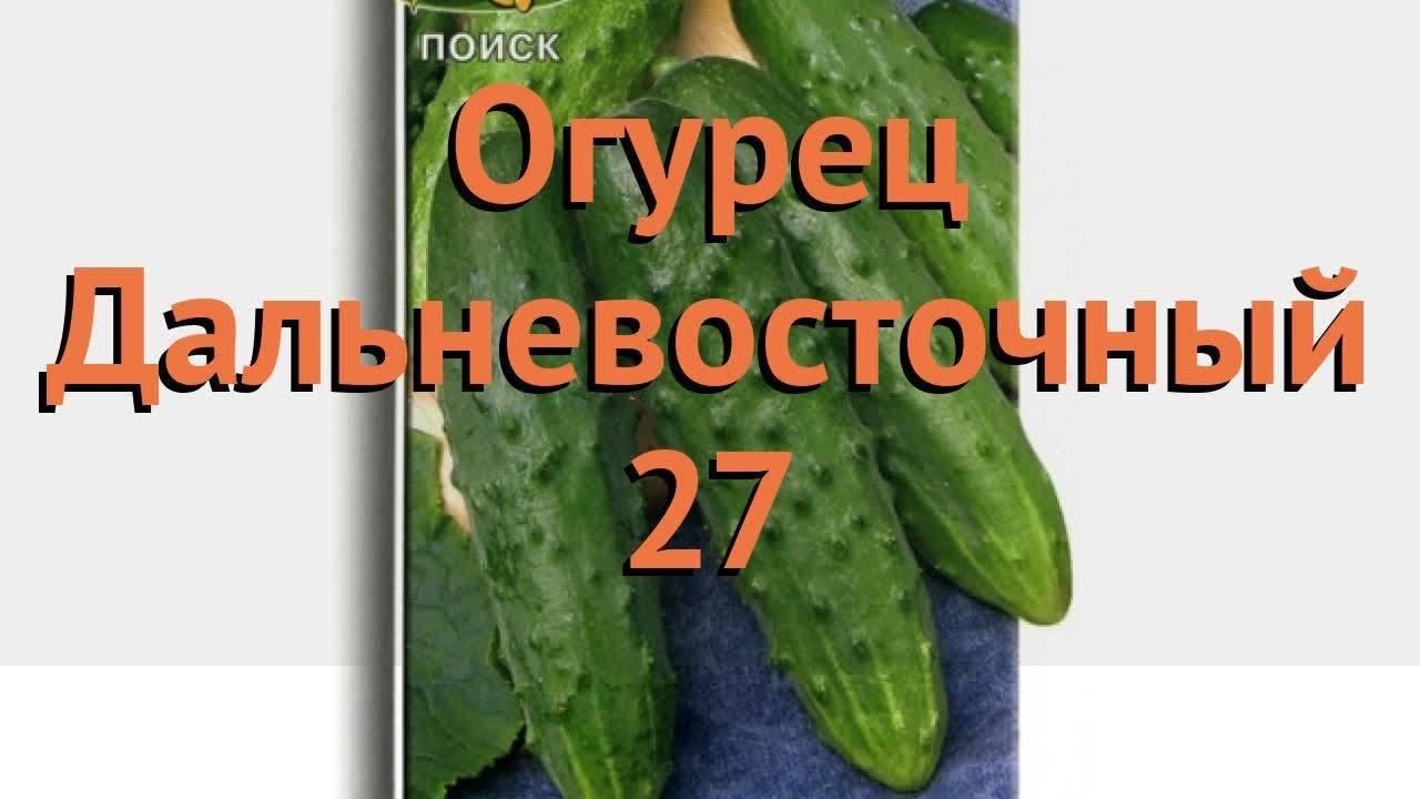 Огурец Дальневосточный 27