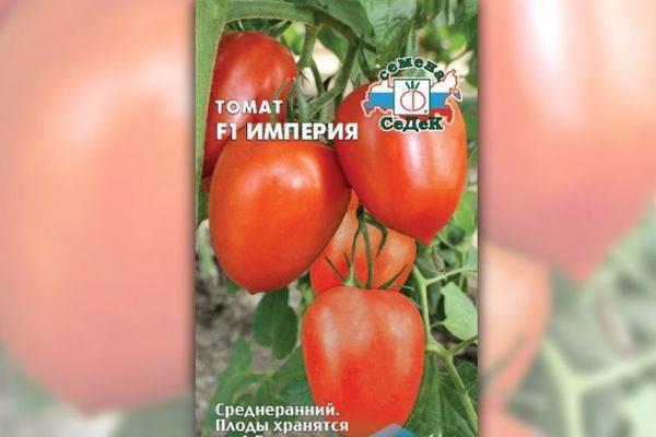 Томат кибиц: характеристика и описание сорта