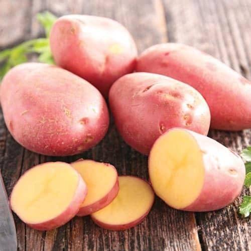 Картофель розана: описание сорта, фото, характеристика