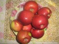 Низкорослые яблони: сорта на карликовом подвое