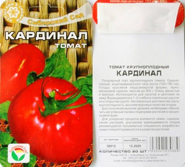 Лучшие сорта томатов устойчивые к фитофторе для выращивания в подмосковье