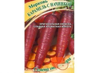 Лучшие сорта моркови с фото и описанием