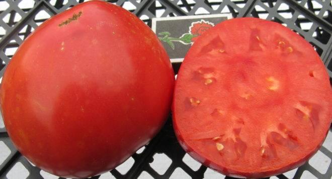Самые сладкие томаты для теплиц: 20 популярных сортов
