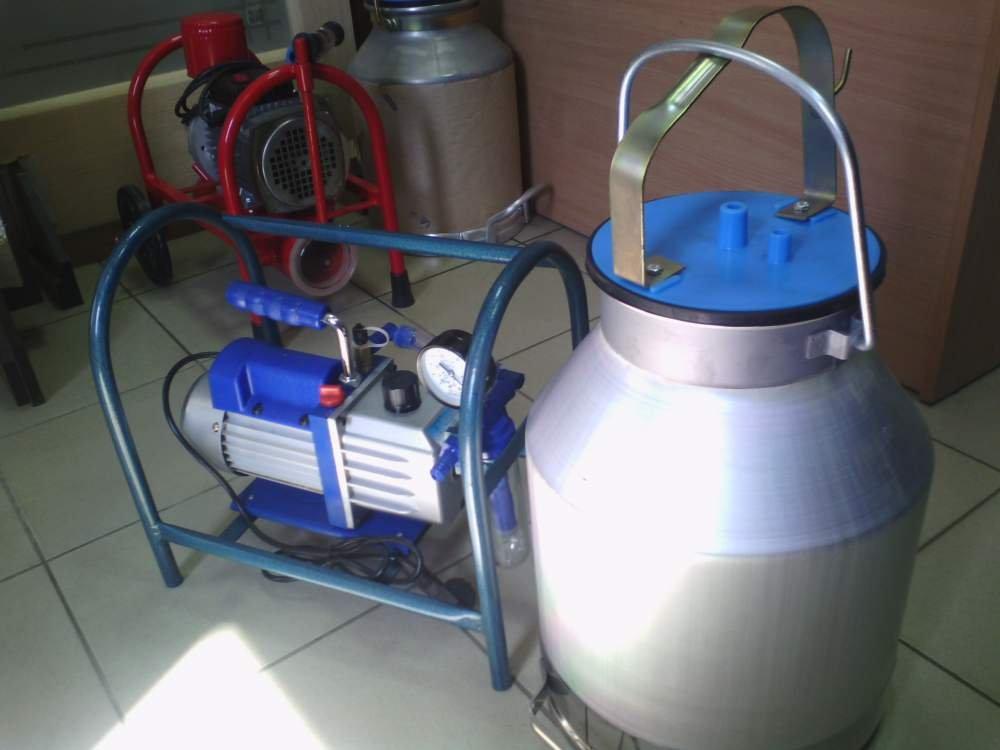 Доильный аппарат: принципы работы и техника машинного доения коров