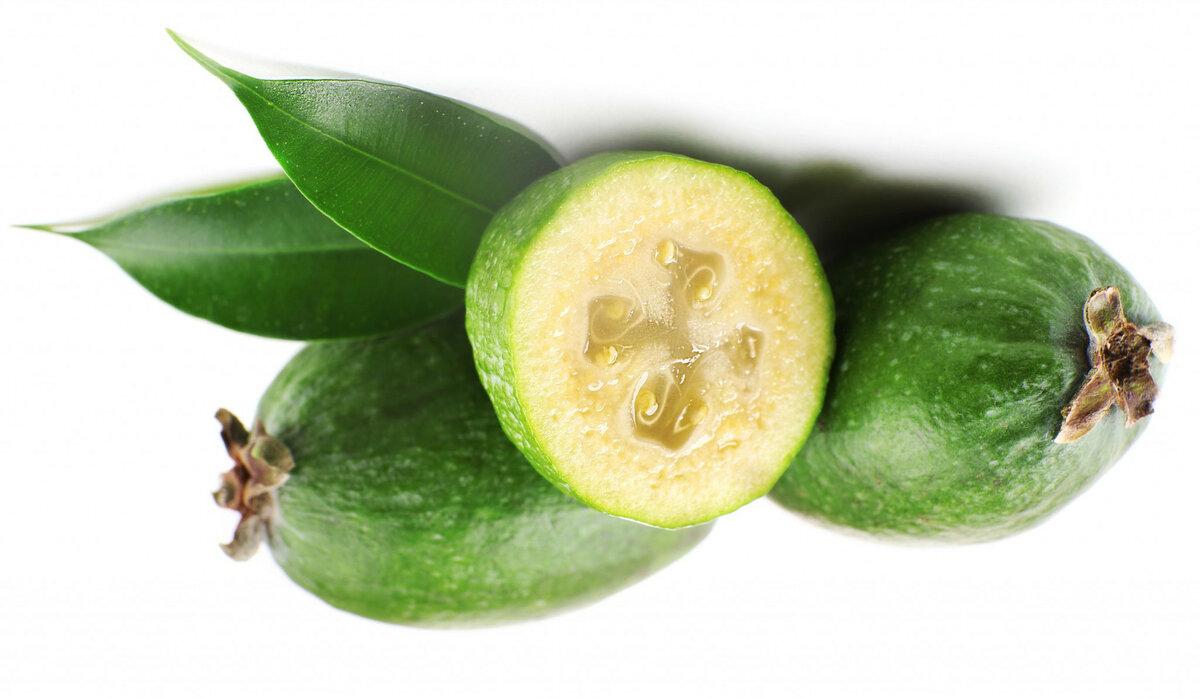 Фейхоа— полезные свойства и противопоказания по применению экзотической ягоды