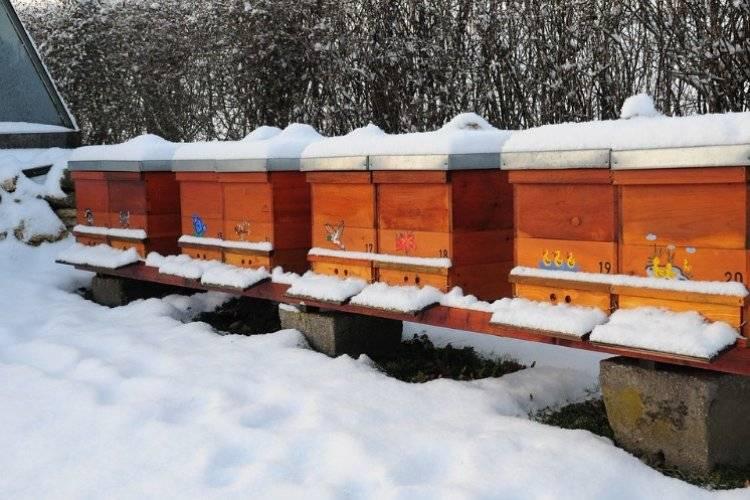 Утепление ульев на зиму пенопластом