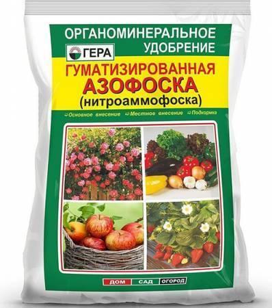 Чем подкормить огурцы в теплице или грунте, какими удобрениями