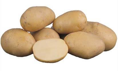 Особенности выращивания картофеля сорта инара
