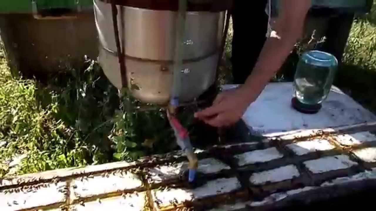 Поилка для пчел и как её устроить