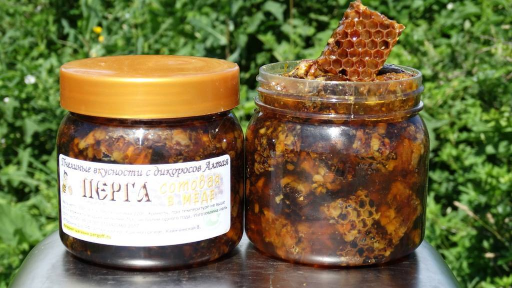 Перга пчелиная – полезные свойства и противопоказания