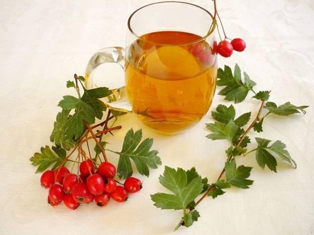 Ягоды боярышника: полезные свойства и противопоказания для женщин, польза и вред