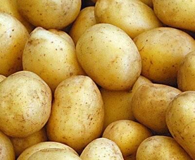 Айл оф джура: описание сорта картофеля, характеристики, агротехника