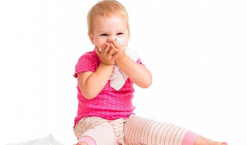 Аллергия на смородину – причины появления и симптомы у взрослых и детей
