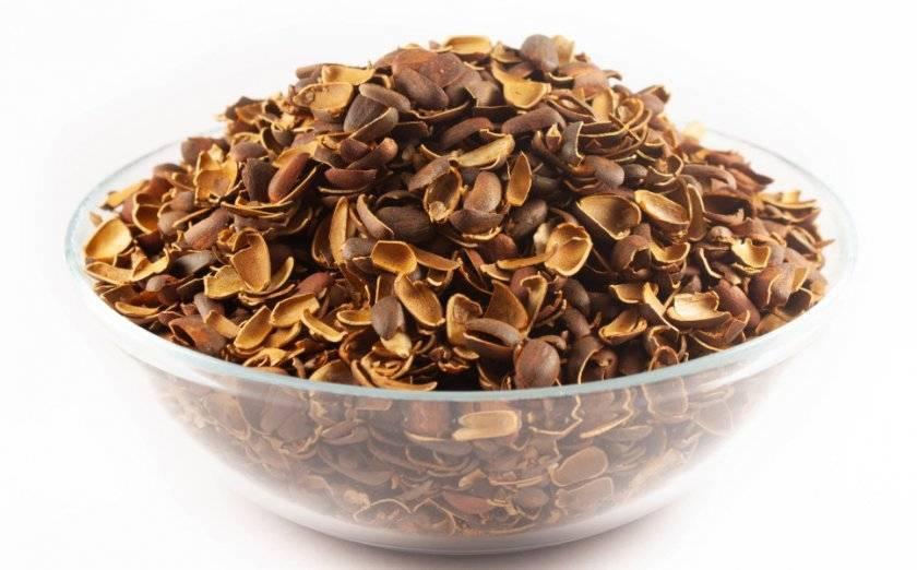 Применение настойки на кедровых орешках, скорлупе, шишках для здоровья и их лечебные свойства