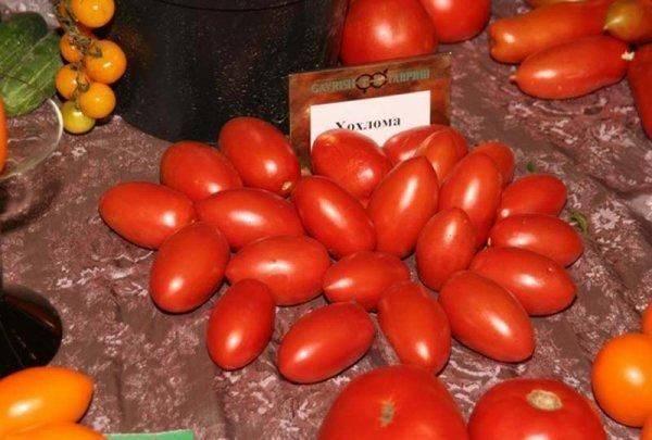 Сорт томатов для лентяев «хохлома»