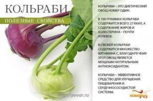 Кольраби: полезные свойства и противопоказания