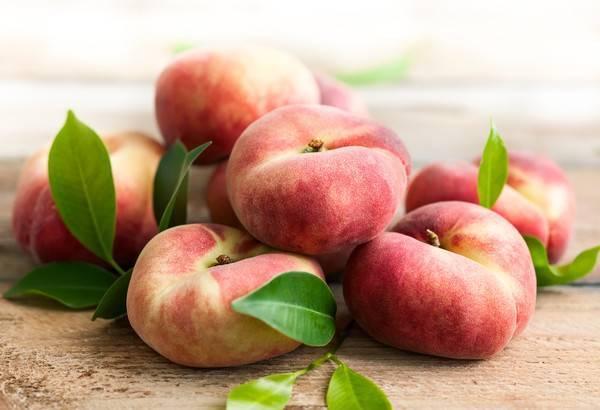 Инжирный персик: выращивание и уход