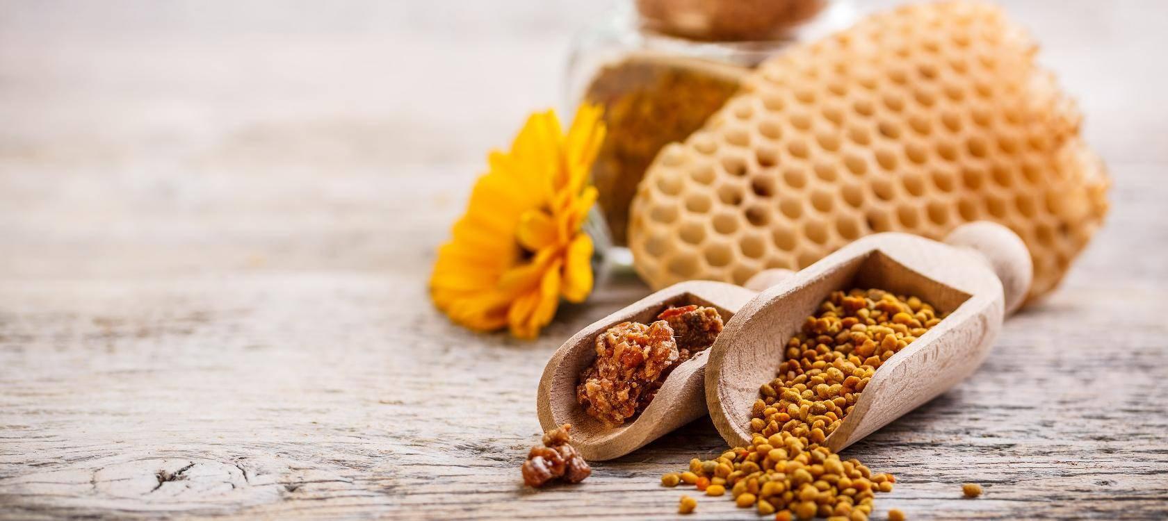 Польза и вред перги с медом