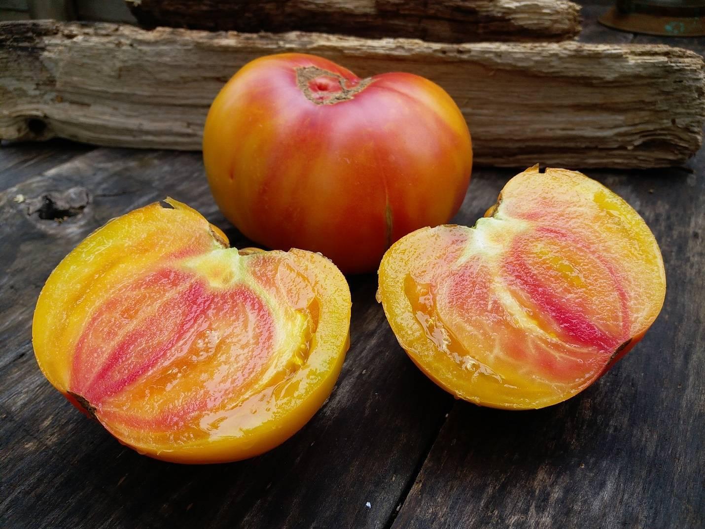 Диетический сорт томата «медово сахарный»: описание помидор, особенности выращивания, правильное хранение и борьба с вредителями