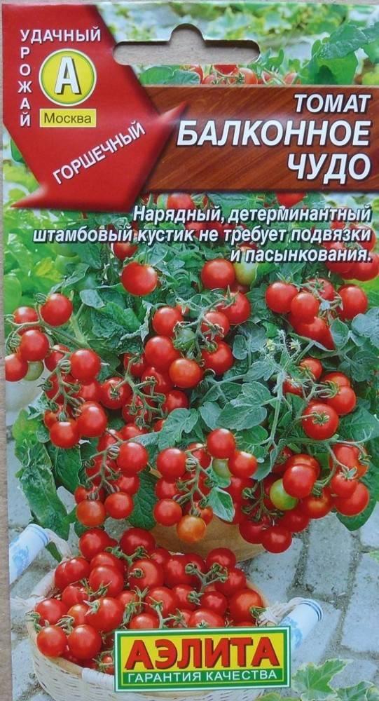 """Томаты """"балконное чудо"""": как вырастить в домашних условиях из семян на подоконнике или балконе, и выращивание данного сорта помидоров"""