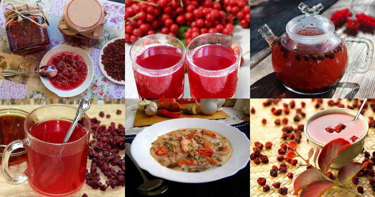 Как заготовить лимонник на зиму. заготовка на зиму плодов китайского лимонника: способы с минимальной потерей полезных веществ