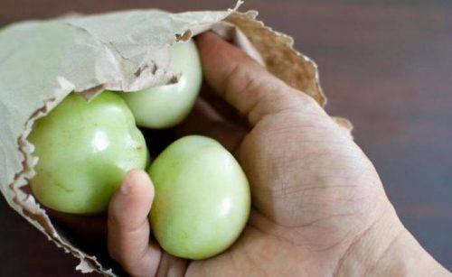 Как хранить зеленые помидоры чтобы они покраснели или остались зелеными